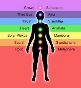 A picture showing the position of the 7 Chakras